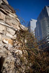 Irish Hunger Memorial, New York